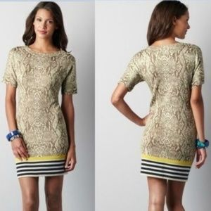 Loft Snakeskin Sweater Dress Merino Wool Medium